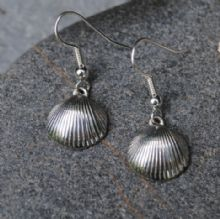 Cockleshell earrings E77